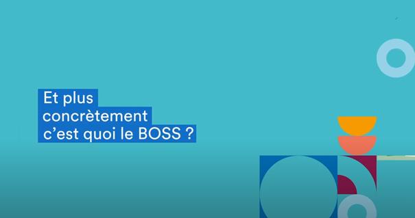 Le BOSS, le nouveau patron des gestionnaires de paie !